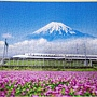 2019.03.11 500pcs れんげの花と富士山(静岡) (1).jpg