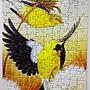2019.03.14 100pcs American Goldfinches.jpg