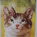 2019.04.10 54pcs  Kitten's Curiosity 好奇喵喵.jpg