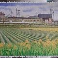 2019.04.15 600pcs Early Summer 初夏-新瀉縣-彌彥線矢作站 (2).jpg