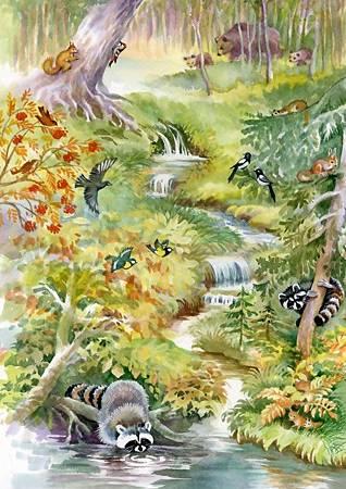 Bluebird 1000P Forest Animals.jpg