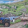 2019.05.20 500pcs Round Up 英國羊 - The Finavon Collection (6).jpg