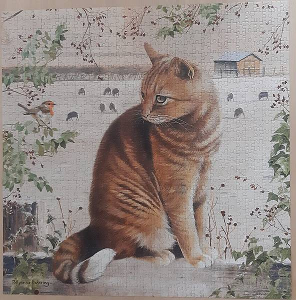2019.05.24 1000pcs Christmas Cat (3).jpg