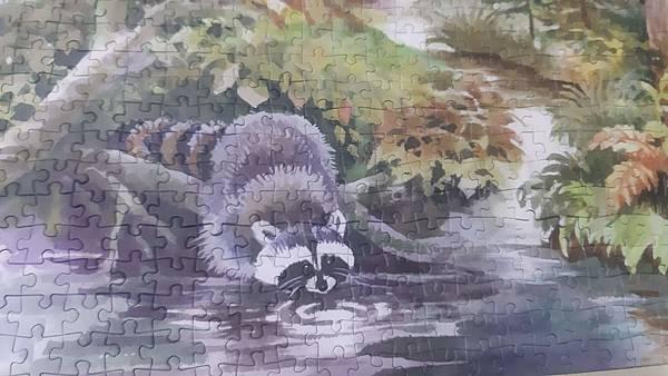 2019.06.01 1000pcs Forest Animals (5).jpg