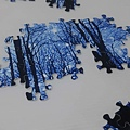 2019.06.18 1000pcs Trees & Forests (2).jpg