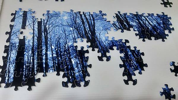 2019.06.18 1000pcs Trees & Forests (3).jpg