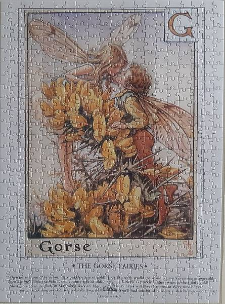 2019.06.22 500pcs Flower Fairies - The Gorse Fairies (3).jpg