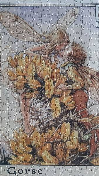 2019.06.22 500pcs Flower Fairies - The Gorse Fairies (4).jpg
