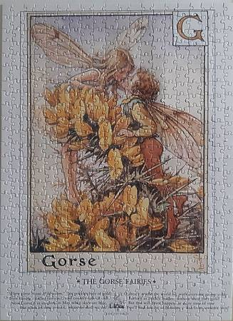 2019.06.22 500pcs Flower Fairies - The Gorse Fairies (6).jpg