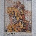 2019.06.22 500pcs Flower Fairies - The Gorse Fairies (6).jpg