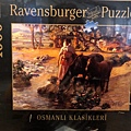 Ravensburger 19449 - The Oasis.jpg