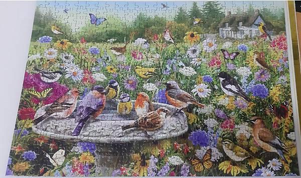 2019.08.01 500pcs The Secret Gardens (1).jpg