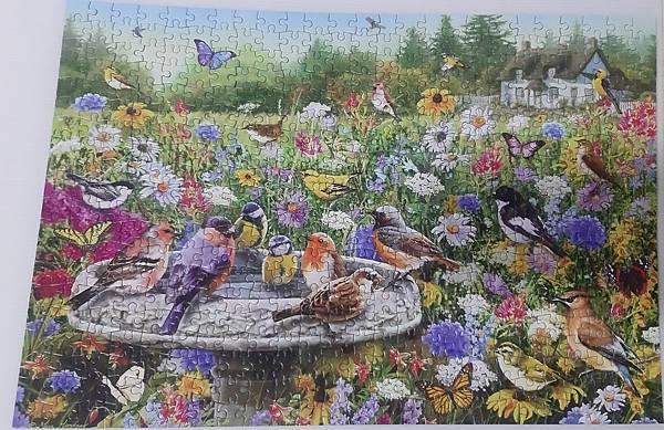 2019.08.01 500pcs The Secret Gardens (2).jpg