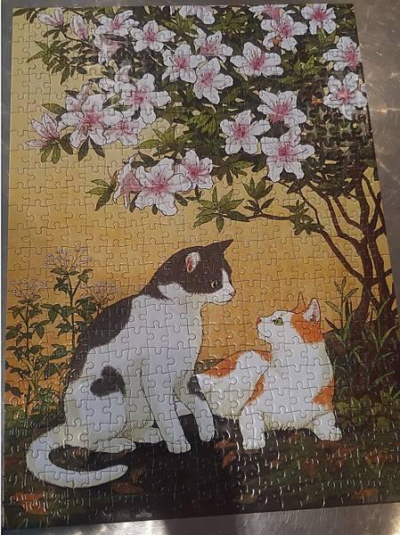 2019.08.23 500pcs Cat and azalea.jpg