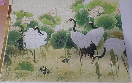 2019.09.19 300pcs 清荷仙鶴 (12).jpg