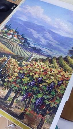 2020.01.01-01.02 4000pcs Vineyard Village part 1 (7).jpg