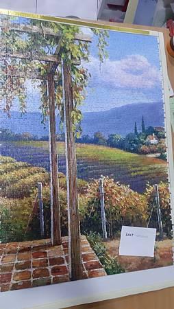 2020.01.05 4000pcs Vineyard Village part 3 (3).jpg