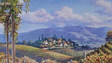 2020.01.01-01.05 4000pcs Vineyard Village (WPD-2) (5).jpg