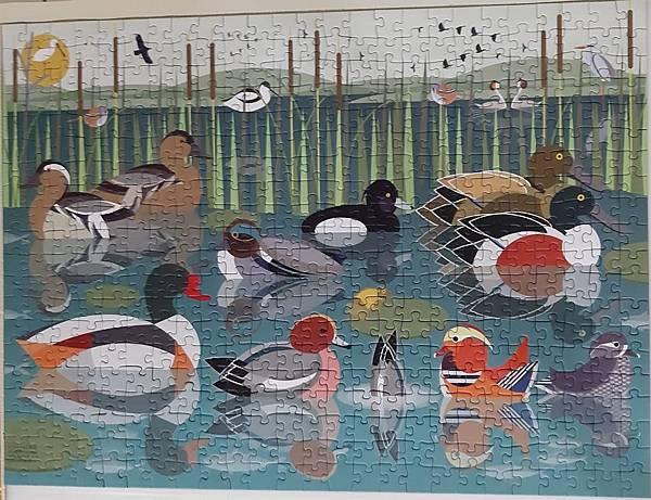 2020.02.04 500pcs Like Birds-Waterlands.jpg