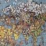 2020.03.15 500pcs Butterfly World Map (8).jpg