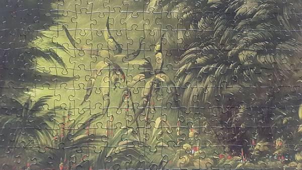 2020.03.298 300pcs Entrance to a Lagoon, Shore of the Amazon, 1854-1869 (5).jpg