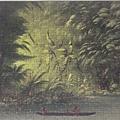 2020.03.298 300pcs Entrance to a Lagoon, Shore of the Amazon, 1854-1869 (6).jpg