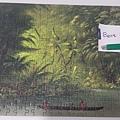 2020.03.298 300pcs Entrance to a Lagoon, Shore of the Amazon, 1854-1869 (2).jpg