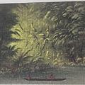 2020.03.298 300pcs Entrance to a Lagoon, Shore of the Amazon, 1854-1869 (3).jpg