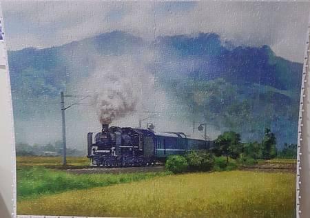 2020.04.23-24 1200pcs A Steam Train Passes Through the Rice Fields 稻香疾馳 (3).jpg