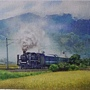 2020.04.23-24 1200pcs A Steam Train Passes Through the Rice Fields 稻香疾馳 (3).jpg