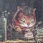 2020.05.05 500pcs Cat's Fish Shop 貓開魚店 (3).jpg