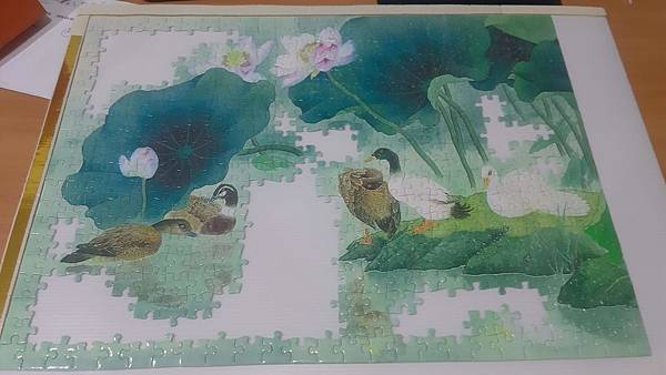 2020.05.25 500pcs Lotus Pond 荷塘 (2).jpg