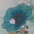2020.05.25 500pcs Lotus Pond 荷塘 (9).jpg