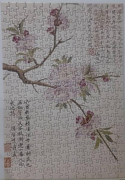 2020.06.02 300pcs Cherry Bloom 櫻花盛開 (2).jpg