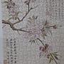2020.06.02 300pcs Cherry Bloom 櫻花盛開 (5).jpg