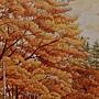 2020.10.24 600pcs Autumn Romance 秋楓色的假期 (2).jpg