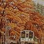 2020.10.24 600pcs Autumn Romance 秋楓色的假期 (1).jpg