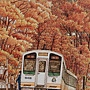 2020.10.24 600pcs Autumn Romance 秋楓色的假期 (4).jpg