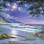 2020 3000pcs Moonlight Beach photo taken by FB-Erica Duijker.jpg