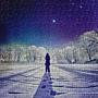 2020.12.01 500pcs The Winter's Diamond 冬のダイヤモンド 天空物語-冬景 (2).jpg