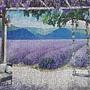 2021.04.28 500pcs Lavender Garden (1).jpg