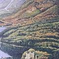 2021.05.27 6000pcs Neuschwanstein Castle (18).jpg