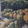 2021.05.27 6000pcs Neuschwanstein Castle (9).jpg