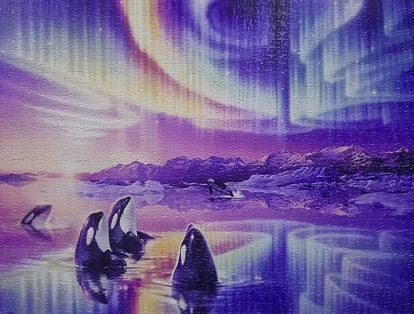 2021.09.26-09.27 1200pcs Morning Song 早晨之歌 (1).jpg