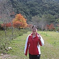 2010.11.19 奧萬大森林遊樂區 (22).JPG