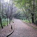 2010.11.19 奧萬大森林遊樂區 (25).JPG