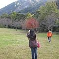 2010.11.19 奧萬大森林遊樂區 (13).JPG