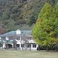 2010.11.19 奧萬大森林遊樂區 (29).JPG