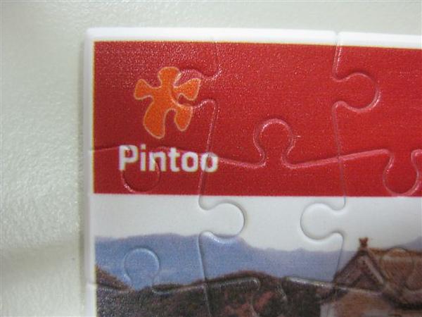 2010.08.10 25 pcs Pintoo (4).JPG