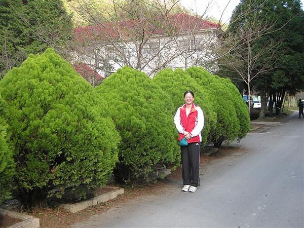 2010.11.19 奧萬大森林遊樂區 (4).JPG